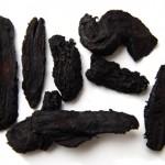 美肌をつくる肉蓯蓉 (にくじゅよう):当店商品「チベット」に含まれています